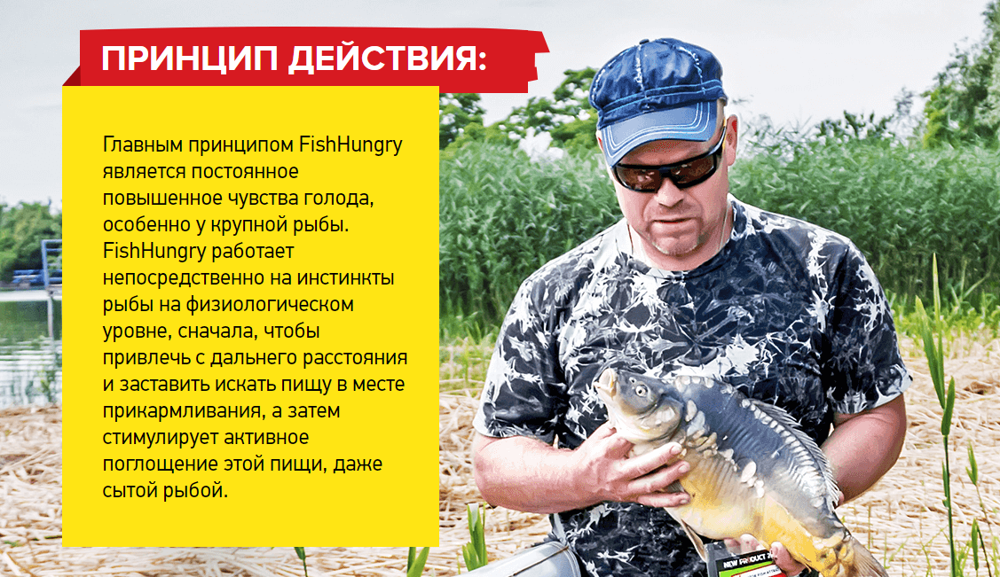 Активатор Клева Fishhungry свойства